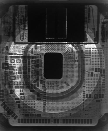 Apple Watch Series 5 Wallpaper (X-ray)