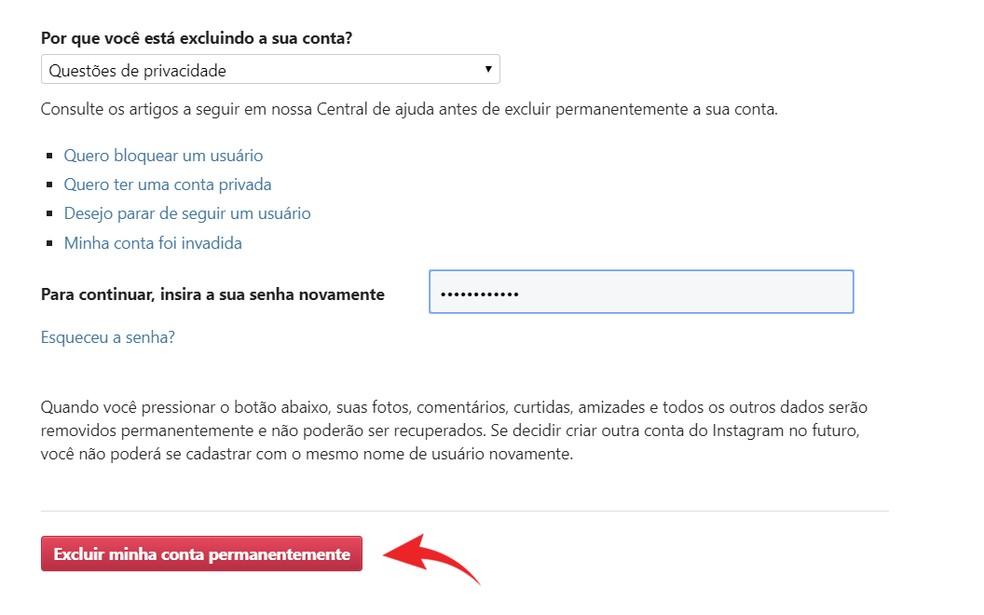 Enter Instagram password and permanently delete account Photo: Play / Ana Letcia Loubak