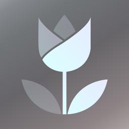 Live Focus app icon