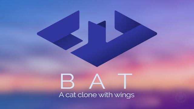 Bat command instead of cat