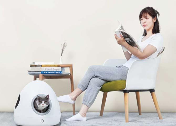 cat inside xiaomi's smart pet nest next to a woman reading a book
