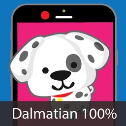 Dog Identify-Breed Identifier app icon
