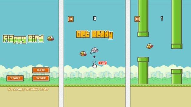 flappy bird photos1