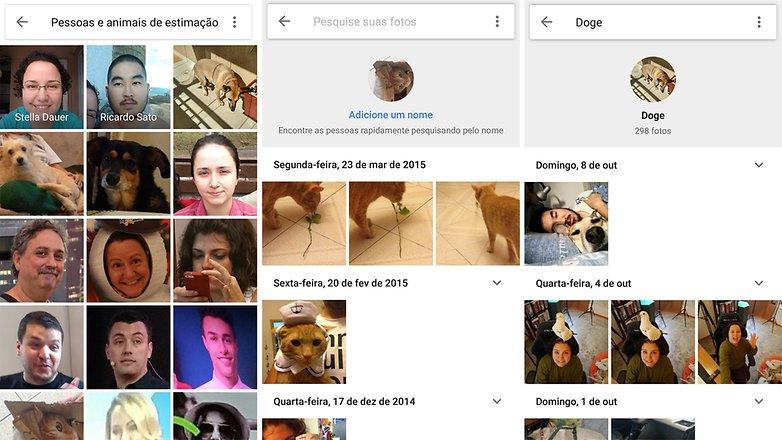 google animal photos 2