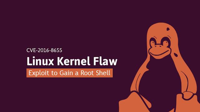 Linux kernel bug