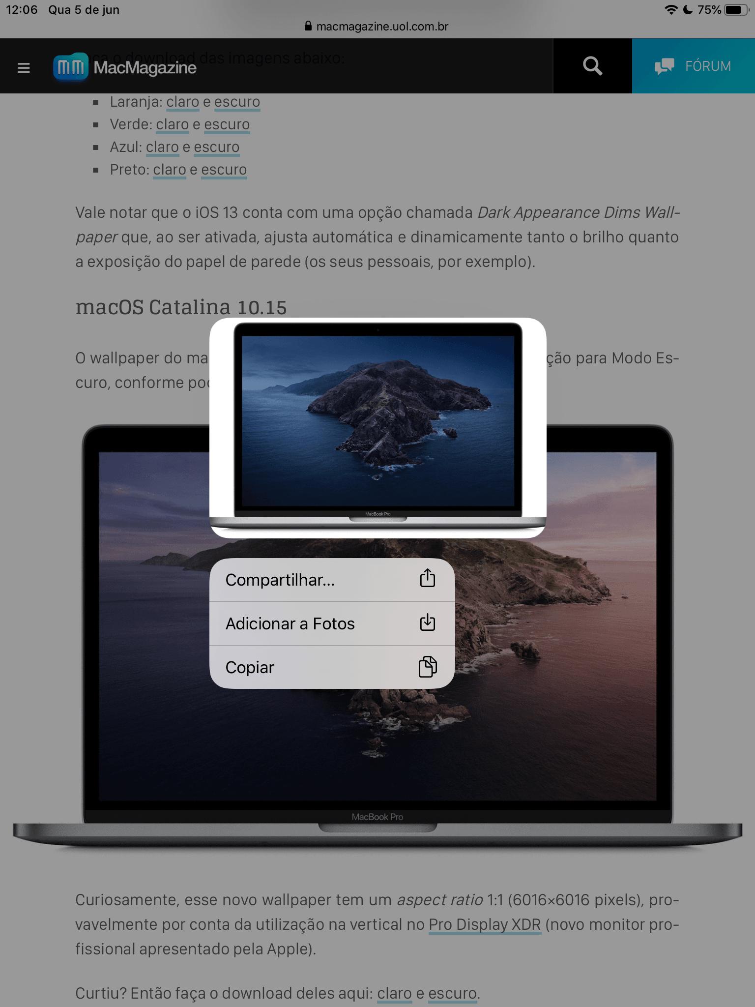 Image Options in Safari 13