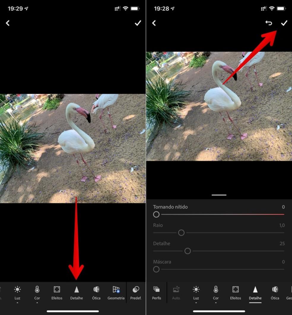 Changing photo sharpness in Adobe Lightroom Photo: Reproduo / Helito Beggiora