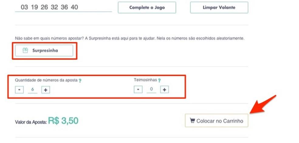 When finalizing an online bet of the Mega Sena da Virada Photo: Reproduo / Marvin Costa