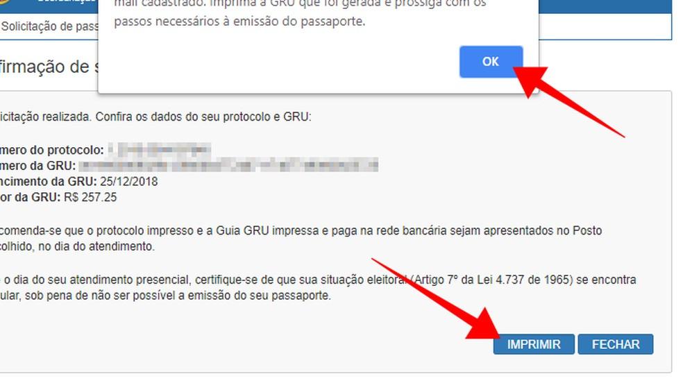 Print the passport fee payment slip on the PF website Photo: Reproduo / Paulo Alves