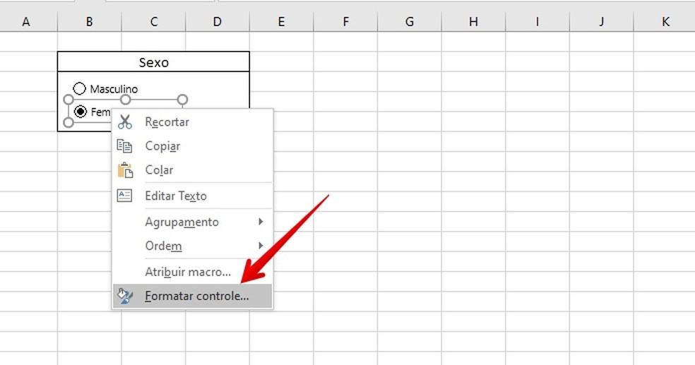 Formatting checkbox or option Photo: Reproduction / Helito Beggiora
