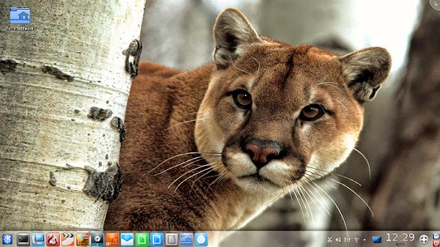 Metamorphose Linux Puma with KDE