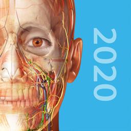 Human Anatomy Atlas 2020 app icon