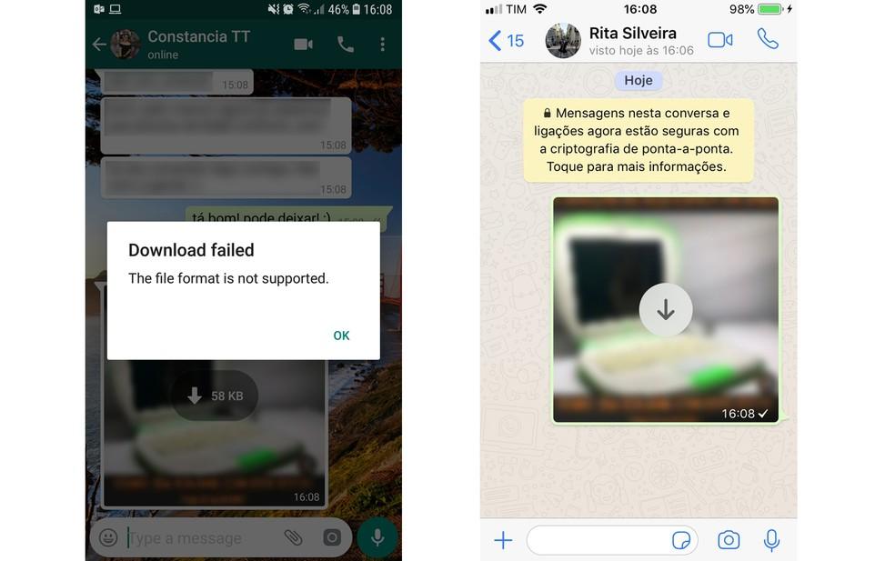 WhatsApp failed to download files Photo: Reproduo / Aline Batista