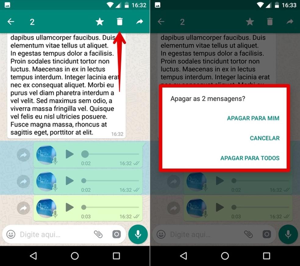 Deleting voice messages Foto: Reproduo / Helito Bijora
