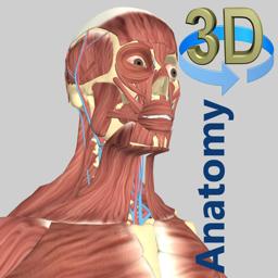 3D Anatomy app icon