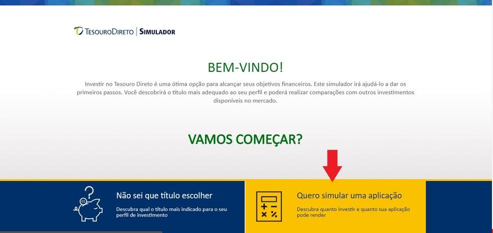 To use the simulator simply access the link inside the Tesouro Direto website Photo: Reproduo / Clara Barreto
