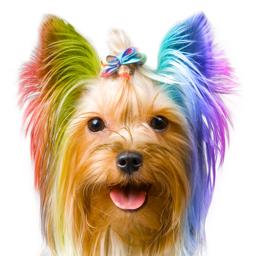Colorize app icon