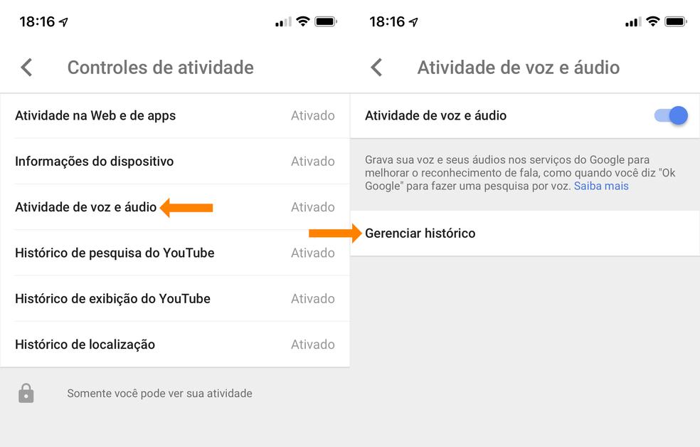 Official Google app has activity log Photo: Reproduo / TechTudo