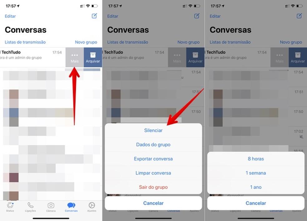 Silencing WhatsApp group on iPhone Photo: Reproduo / Helito Beggiora