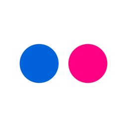 Flickr app icon