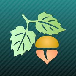 Focus on Plant app icon