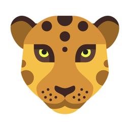 MORPH - Face Story & Flipagram app icon